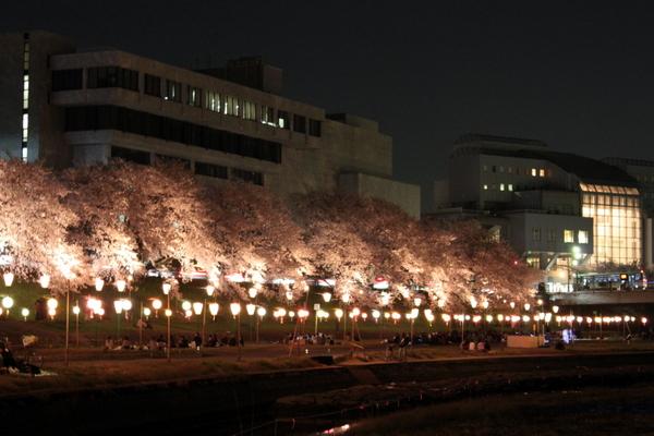 岡山さくらカーニバル2013③