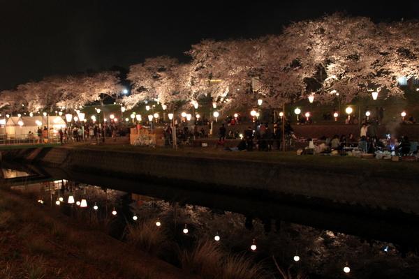 岡山さくらカーニバル2013④