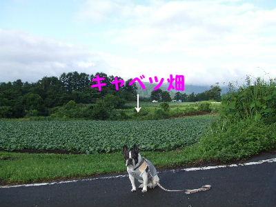2012_07082012蒜山0220.1