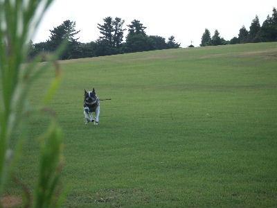 2012_08122012蒜山20008