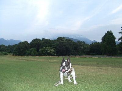 2012_08122012蒜山20011