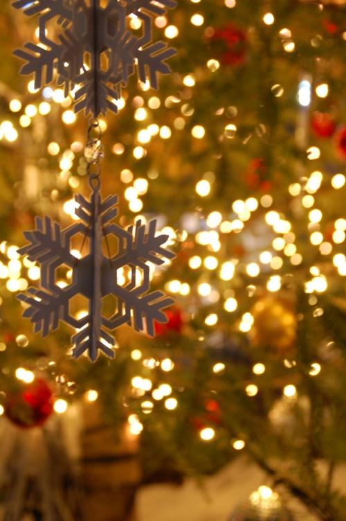 穂高地区イルミ_クリスマス