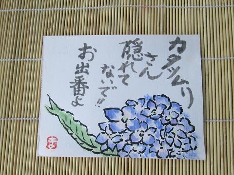 sl-480-004_20130626175706.jpg