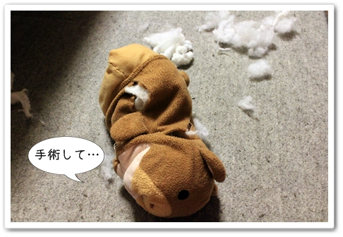 12_20130326032131.jpg