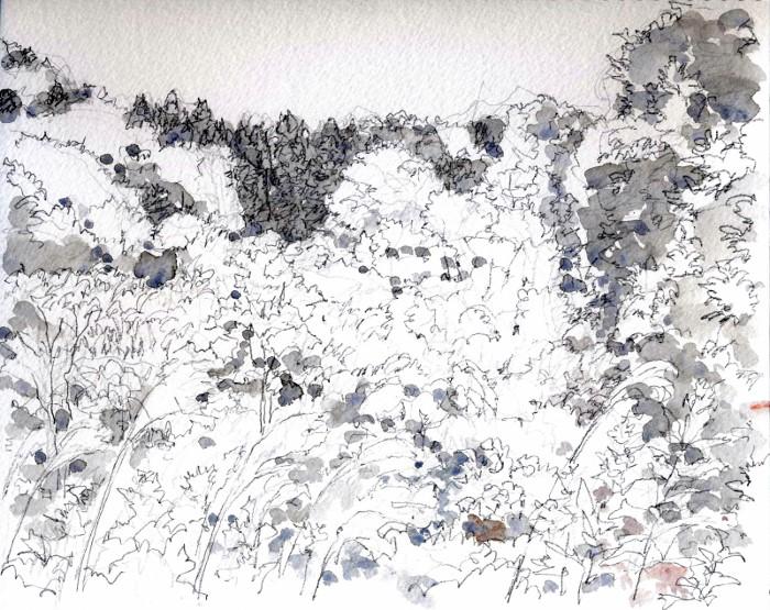 秋の山高槻 グリサイユ (700x555)