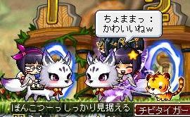 Maple120820_010408.jpg