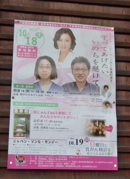 慈尊院のピンクライトアップ2014-01
