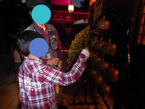 慈尊院のピンクライトアップ2014-05