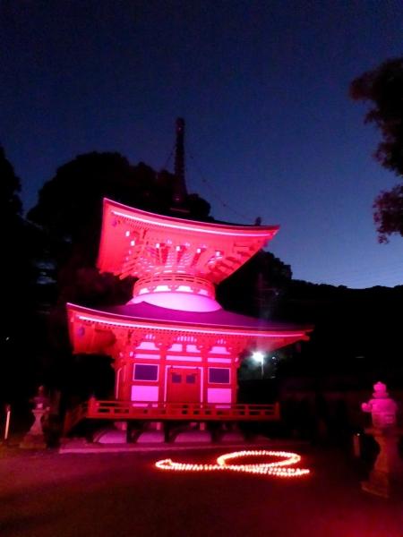 慈尊院のピンクライトアップ2014-04