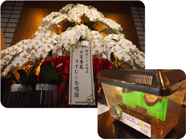 すずむし合唱団_600px