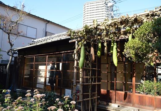 入谷・根岸 (120)_R