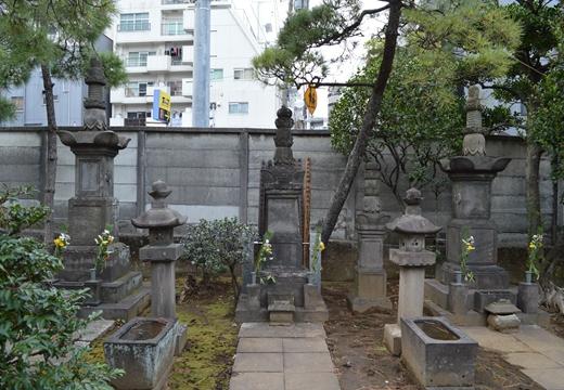 内藤新宿 20130106 (121)_R