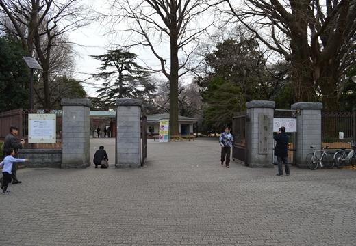 内藤新宿 20130106 (154)_R