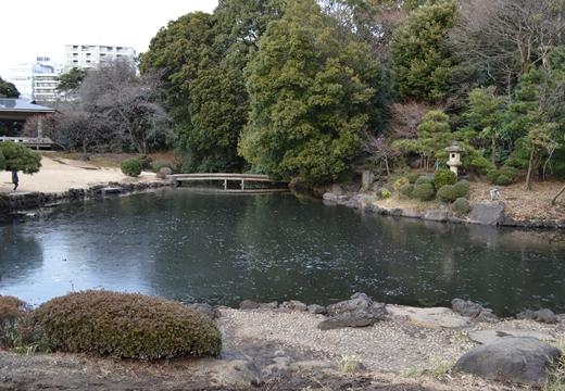 内藤新宿 20130106 (226)_R