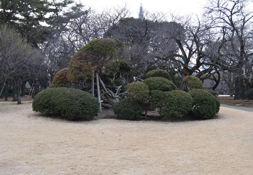 内藤新宿 20130106 (225)_R