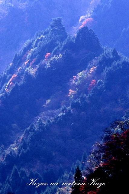 秋の情景12