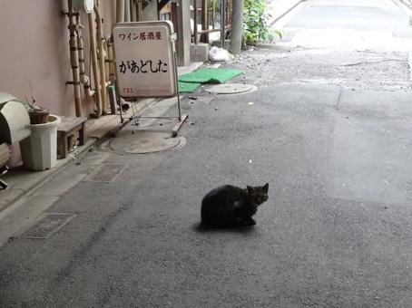 今川小路03