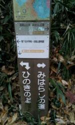 image_20121124172730.jpg