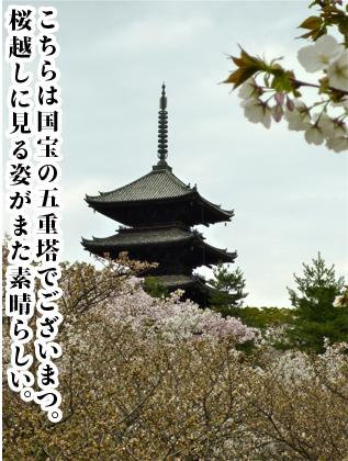 120709-07.jpg