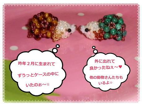 花ブ2012525-5