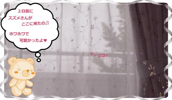 花ブ2012627-3