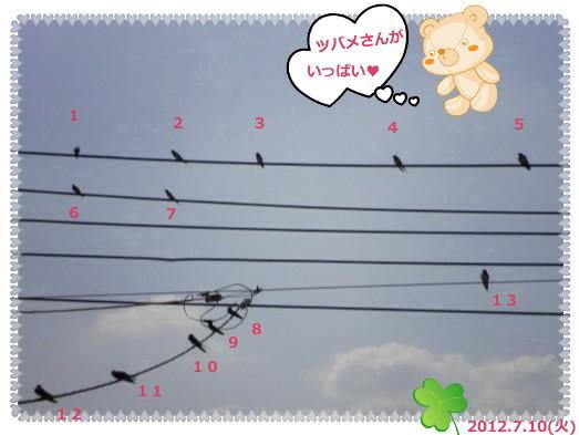 花ブ2012711-5