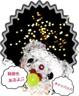 花ブ2012818-05