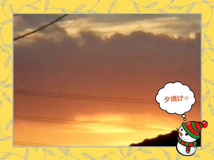 花ブ2012823-6