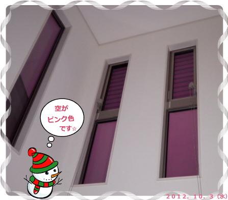 花ブ2012104-4