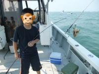 イイダコ釣り