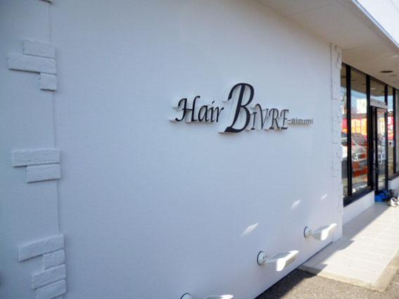 HairBIVRE2.jpg
