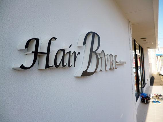 HairBIVRE4.jpg