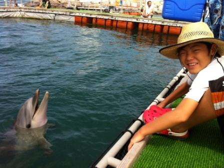イルカとわもん