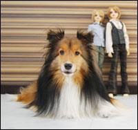 人形と坊ちゃん。