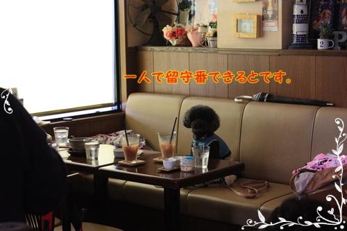 089_20120922232719.jpg