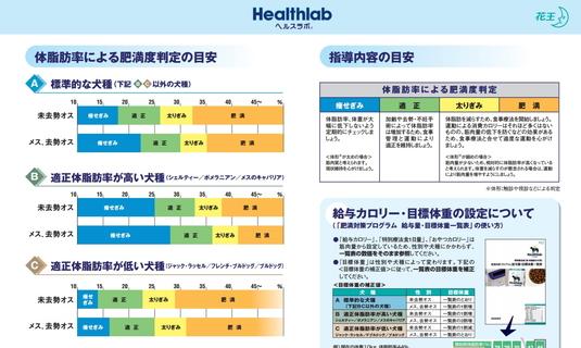 535px体脂肪率目安[1]