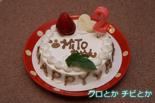 535px20141208_ケーキ-01