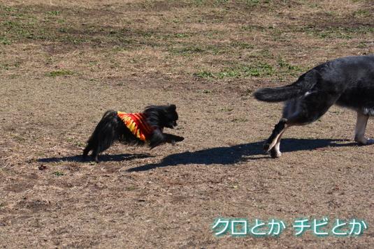 535px20141217_FUGA-04.jpg