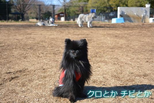 535px20141219_FUGA-03.jpg