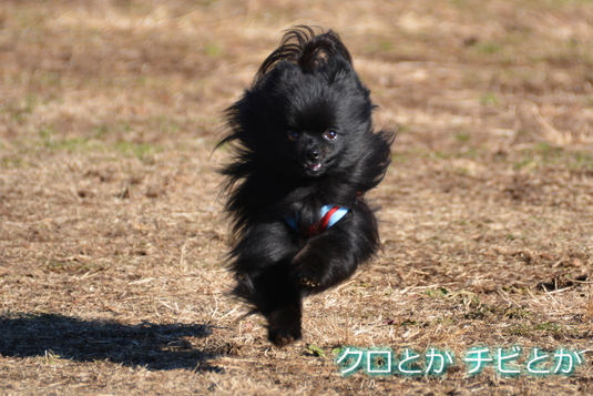 535px20141219_FUGA-04.jpg