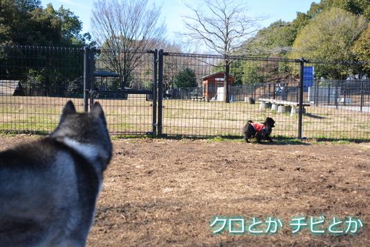 535px20141219_FUGA-05.jpg