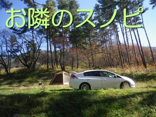 2014-10-31-1+006_convert_20141031194624.jpg