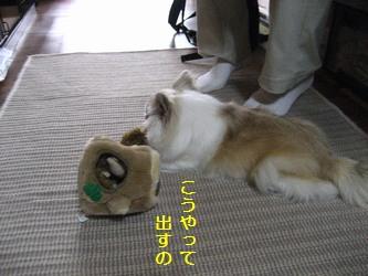 リスのおもちゃ1