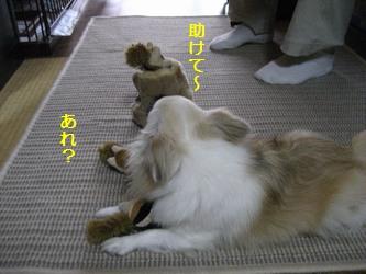 リスのおもちゃ3
