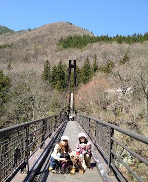 2012.4.29橋