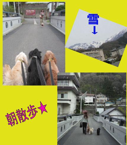 2012.4.30朝散歩