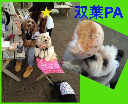 2012.5.4双葉PA