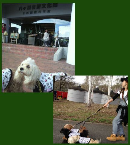 2012.5.4文化園