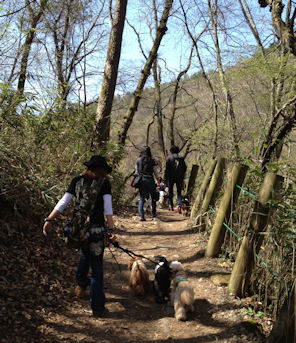 2012.5.5滝へGO