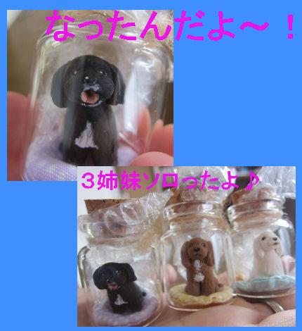 2012.6.22なっちゃんだよー